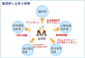 sisyu2.jpg